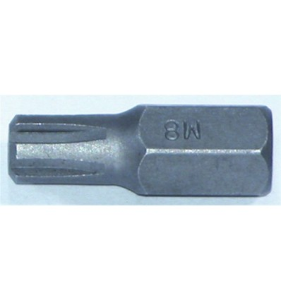 Antgalis, M6, Ribe, 10mm, L-30mm