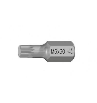 Antgalis, M10, Spline, 10mm, L-30mm