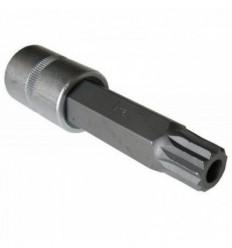 Galvutė antgalis, M14, Spline tamp., 1/2`, L-55mm